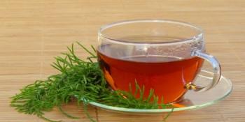Kırkkilit Otu Çayı Faydaları Nelerdir? Ne İşe Yarar?