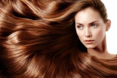 Yıpranmış Saçlar İçin 6 Bitkisel Yağ